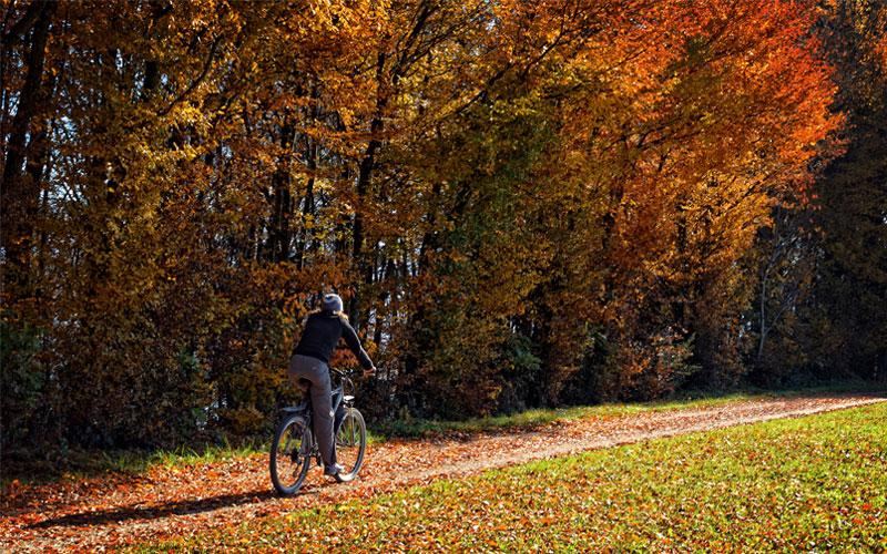 Каране на колело през есента – 1 част