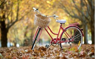Каране на колело през есента – 2-ра част